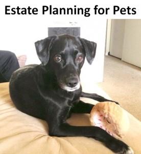 pet-trust-package7046